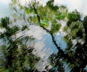 image for Gruene River inTexas